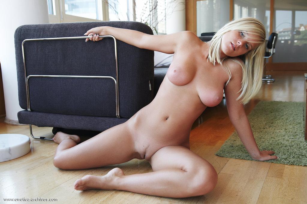 Figlarny blond kociak