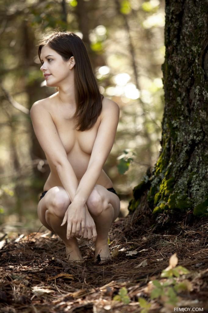 Sarenka w lesie