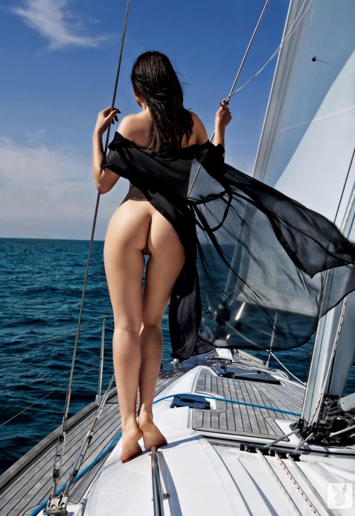 Wilczyca morska