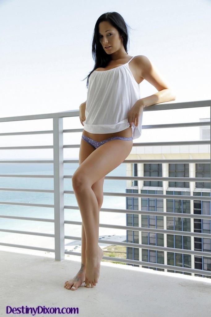 Szatynka na balkonie