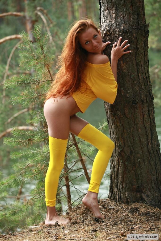 Ruda wiewióra w lesie