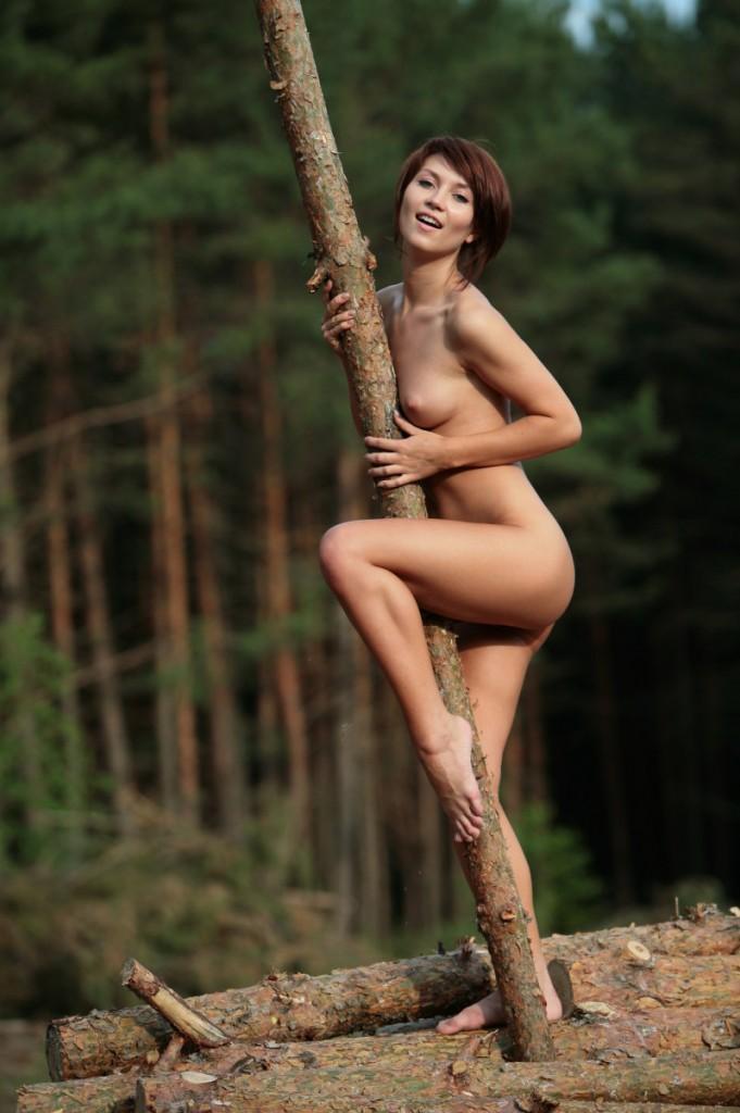Dzika dupa w lesie