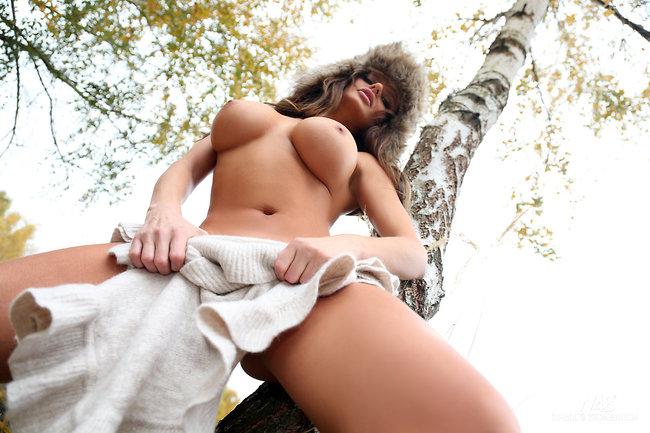 Jesienny dzień w lesie